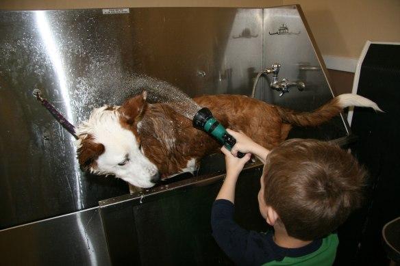 buster-bath-3