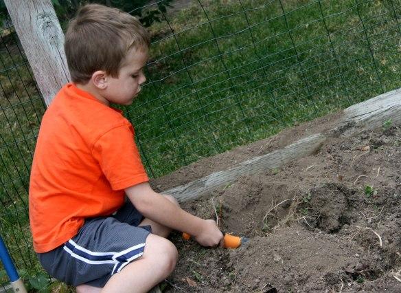 digging-garden-hole