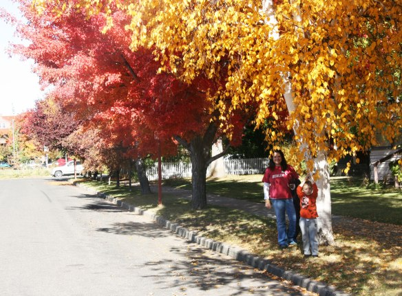 me-and-davey-leaves