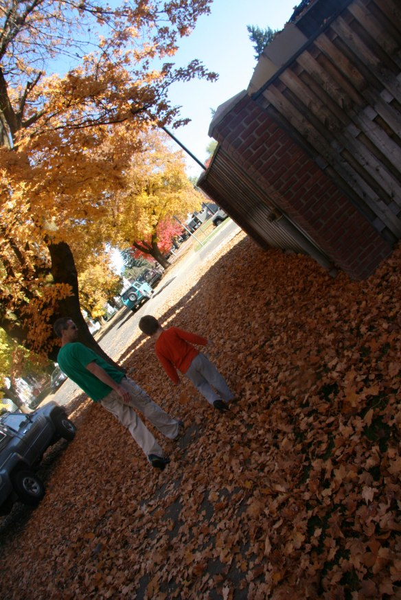 walk-in-the-leaves