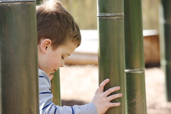 bamboo-play