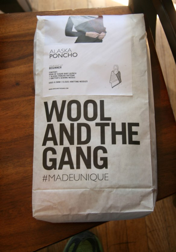 wool-and-the-gang-1